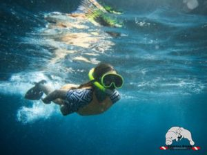 professional scuba diving courses