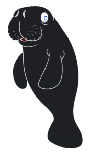 manatee-all-black