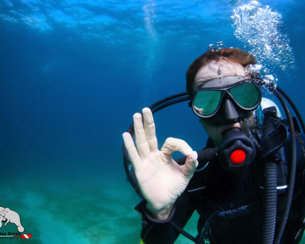 Scuba diving lessons in Florida